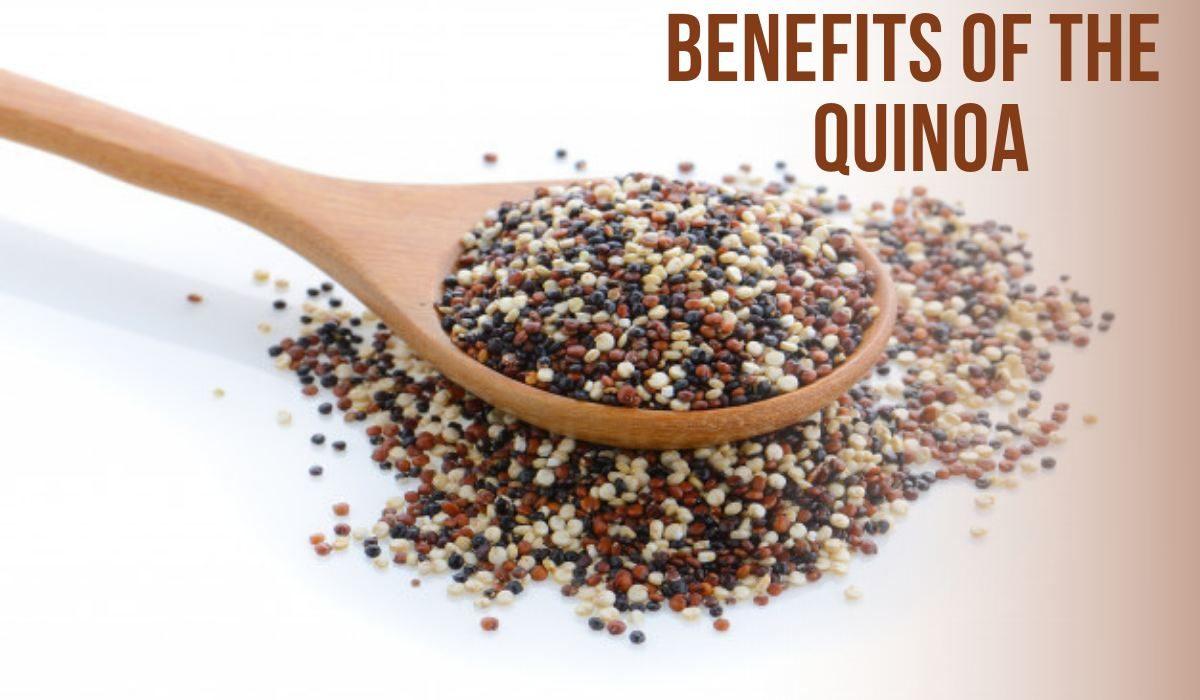 Benefits of the quinoa?