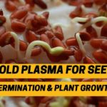 Cold Plasma for seed germination and plant growth