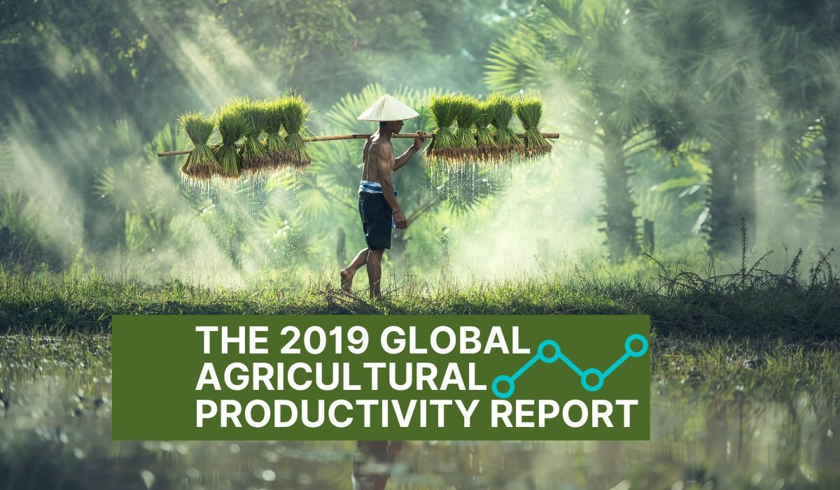 The 2019 Global Agricultural Productivity Report