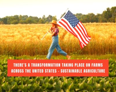 There's a transformation taking place on farms across the United States – Sustainable agriculture