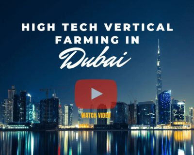 High tech vertical farming in Dubai