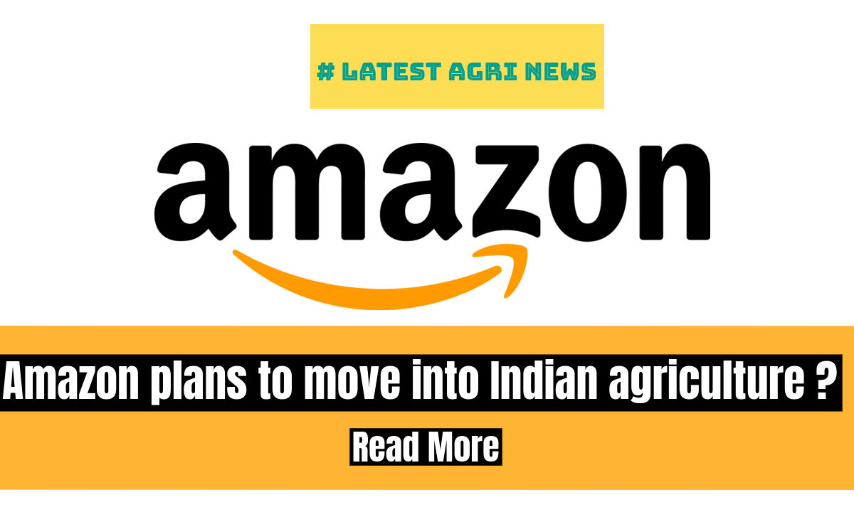 Amazon plans a potential innovation centre in India to support agriculture and healthcare