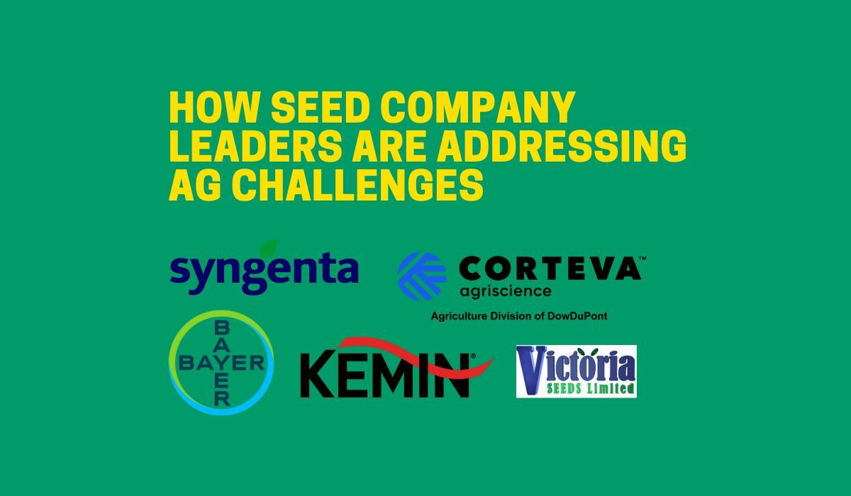 How seed company leaders are addressing AG challenges