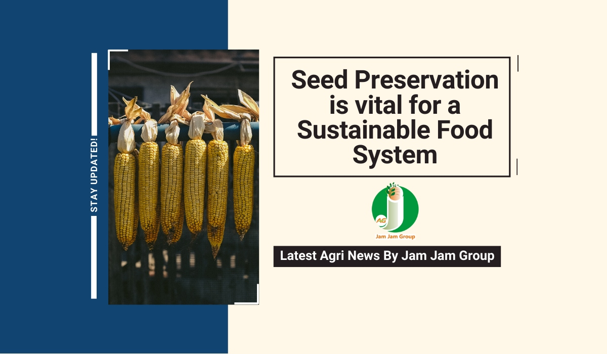 Seed preservation is vital for a sustainable food system