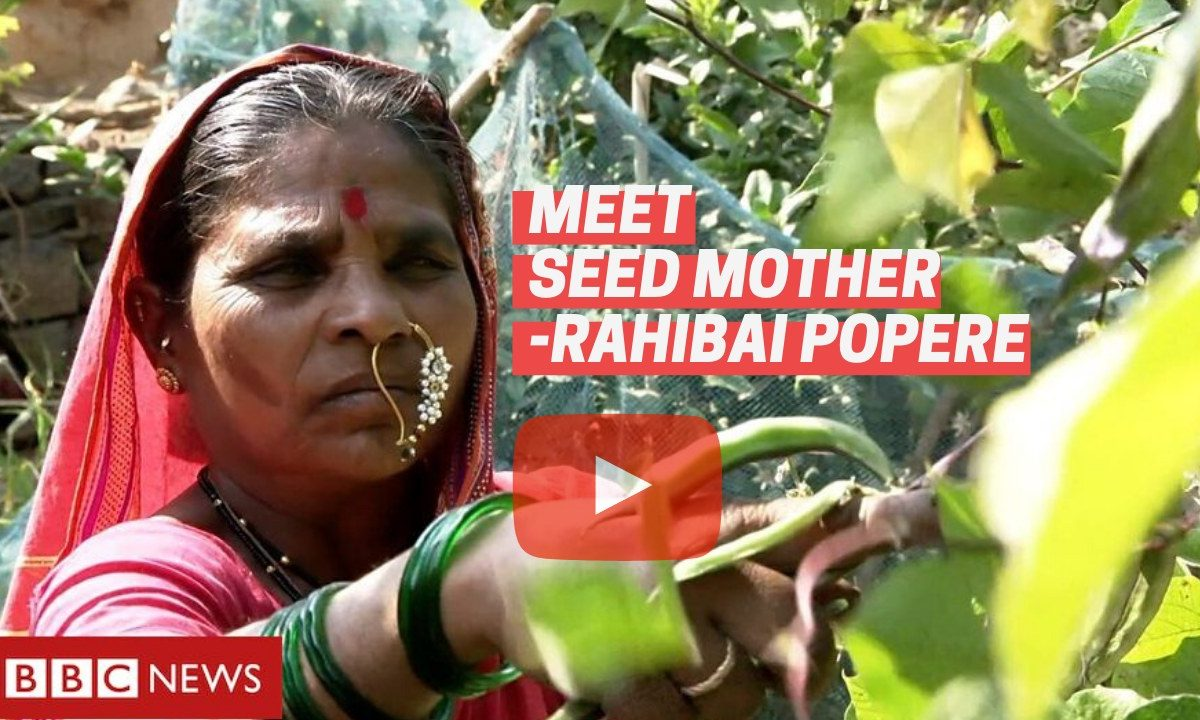 Meet Rahibai Popere 'Seed Mother Of India' – Padma Shri 2020 Awardee