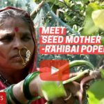 Meet Rahibai Popere 'Seed Mother Of India' – Padma Shri 2020 Awardee