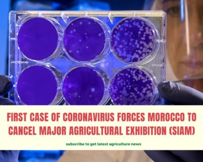 First case of Coronavirus forces Morocco to cancel major agricultural exhibition (SIAM)