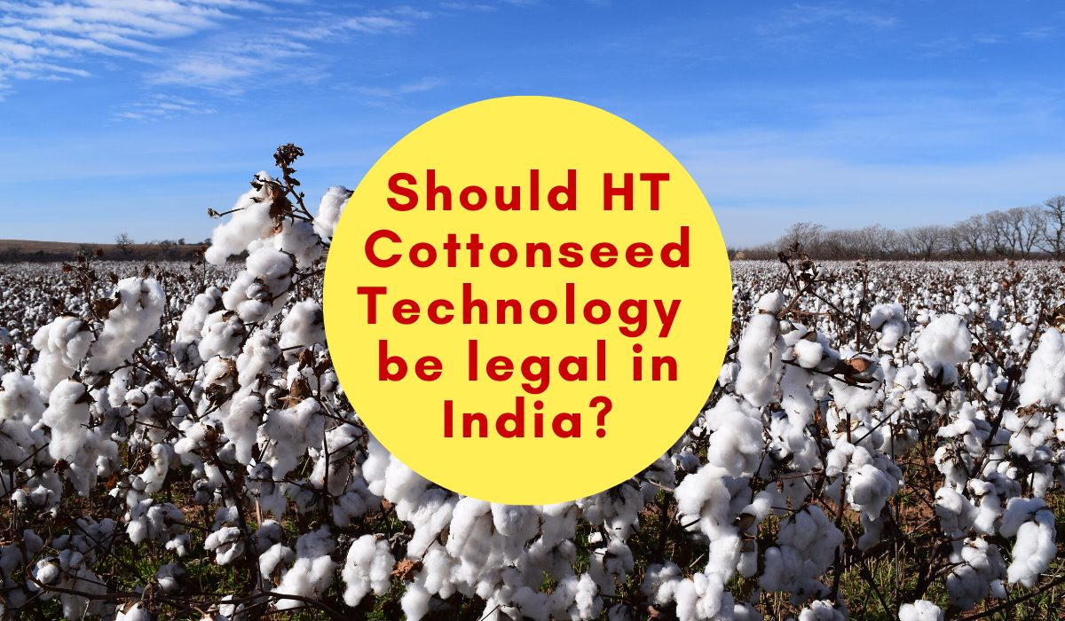 Should HT Cottonseed Technology be legal in India?
