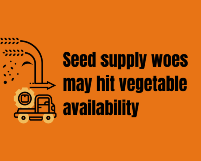 Seed supply woes may hit vegetable availability