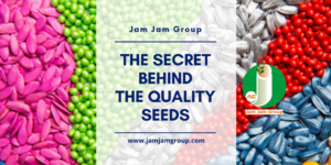 The Secret Behind The Quality Seeds