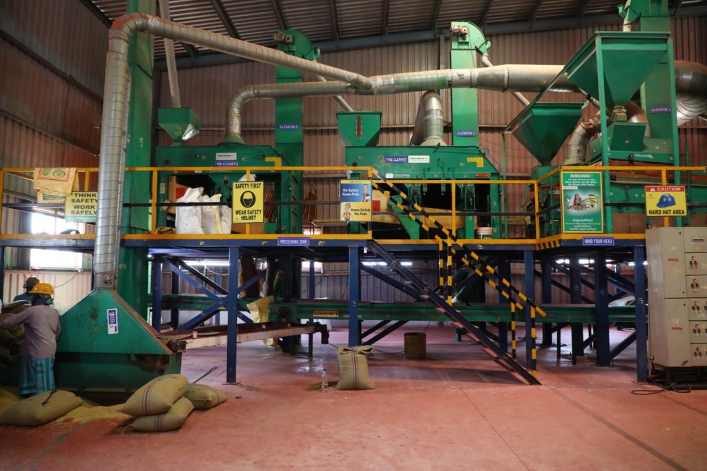 Vegetable Seed Processing And Packing